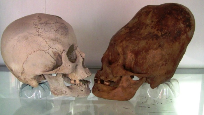 The-Elongated-Paracas-Skulls-700x394